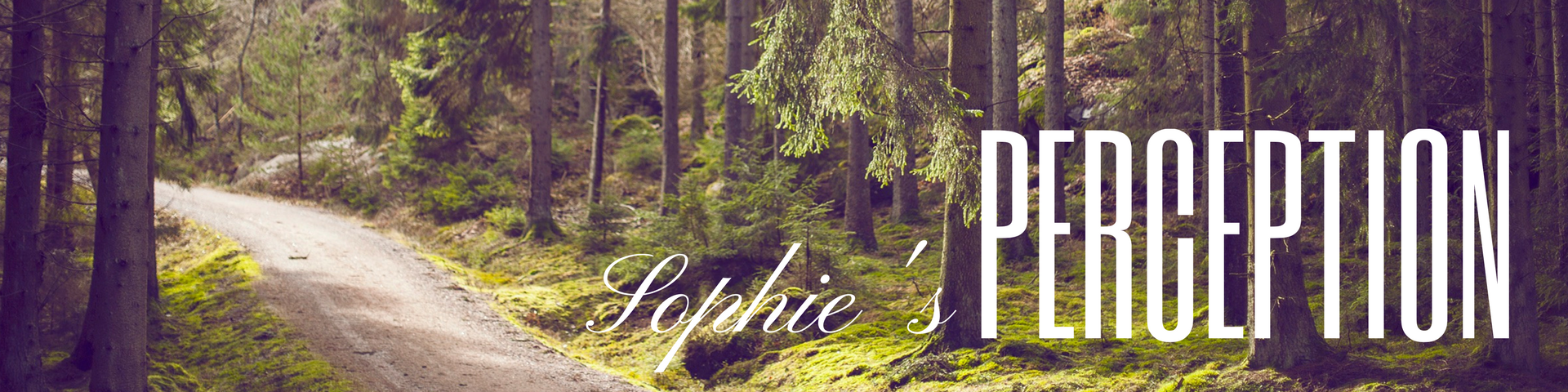 Sophie's Perception